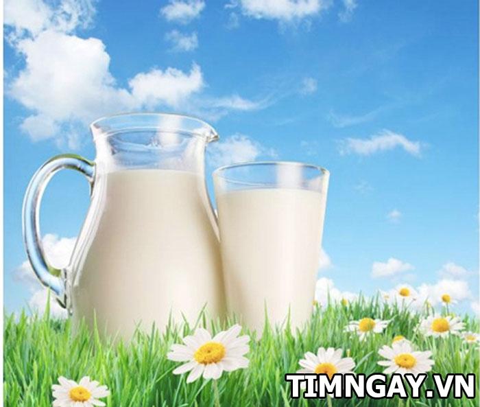Bé 1 tuổi nên uống sữa tươi không? Uống khi nào và loại sữa nào tốt nhất cho trẻ 2