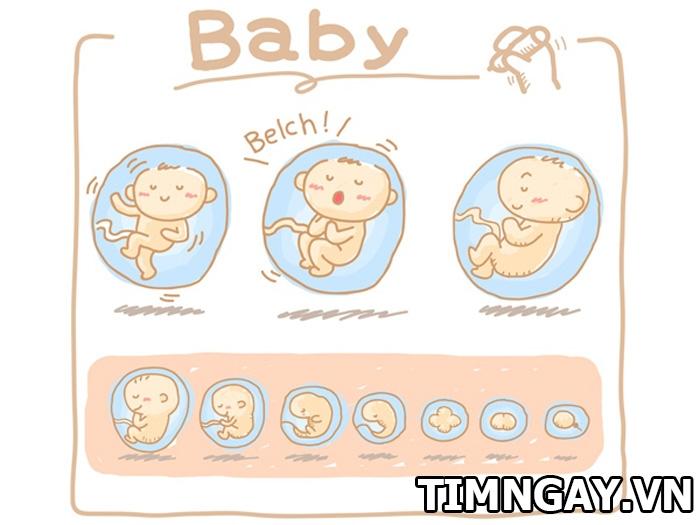 Nguyên nhân khiến thai nhi nấc cục trong bụng mẹ và cách chữa 1