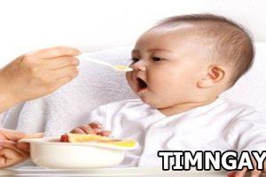 Những món cháo dinh dưỡng cho bé dưới 1 tuổi đơn giản mẹ nào cũng phải biết
