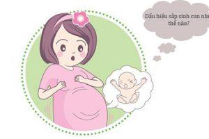 Dấu hiệu sắp sinh ở tuần 38 mẹ bầu đã biết chưa?
