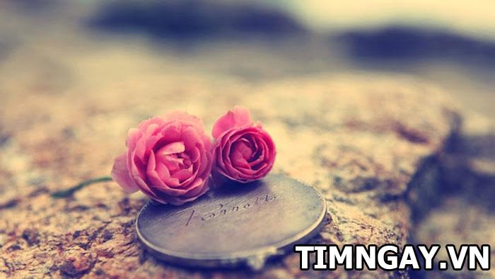 Những status lãng mạn, ý nghĩa nhất về tình yêu, tình bạn 2