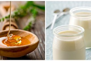 Bí quyết giảm rụng tóc bằng mặt nạ sữa và mật ong cực hiệu quả