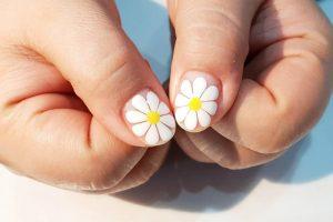 Cách vẽ móng tay hoa cúc trắng tinh khôi cho các bạn gái