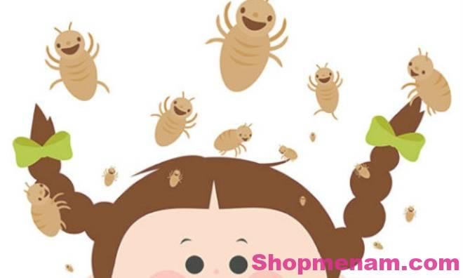Ngăn ngừa chấy rận bằng dầu dừa tinh khiết an toàn cho trẻ em 1